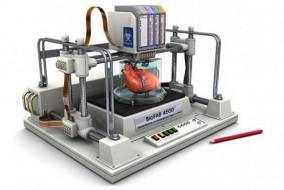 organen 3d printen